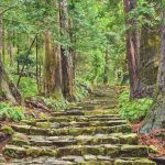 Backyard Travel taking a new look at ancient Japanese Trails
