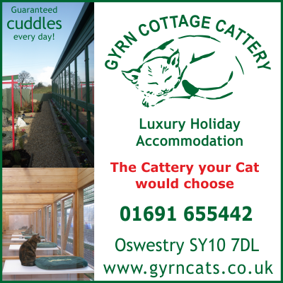 Gyrn Cottage Cattery in Shropshire