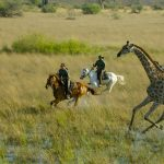 10 great horseback nature escapes