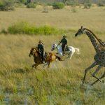 10 great horseback nature escapes