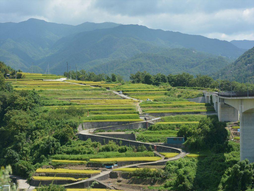 Kobushi Biosphere Reserve, Japan. © UNESCO/Kobushi Biosphere Reserve, Japan