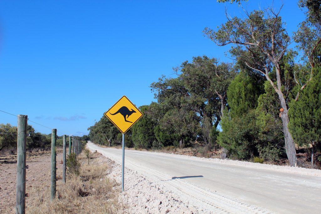 Gap Year Australia
