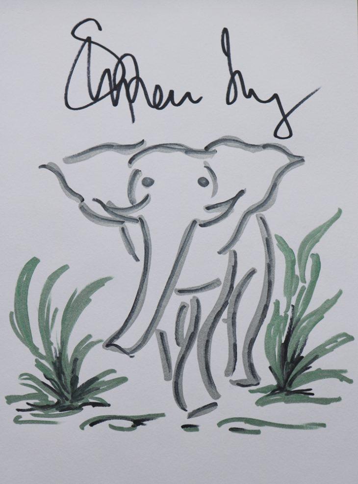 Wildlife artwork sketch for Survival Stephen Fry