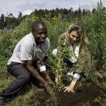 Bisate Safari Lodge pioneering sustainable ecotourism in Rwanda Wilderness