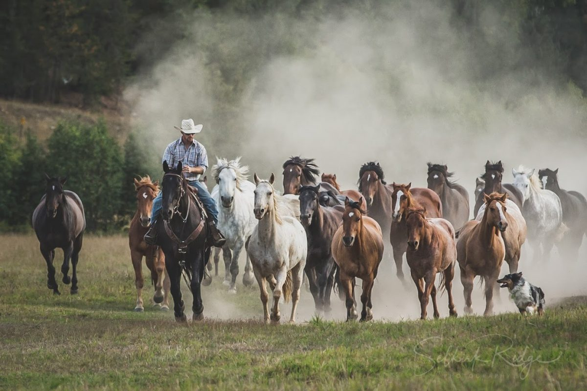 Ranch Rider captures the Spirit of the West with the #LetsSaddleUp Campaign