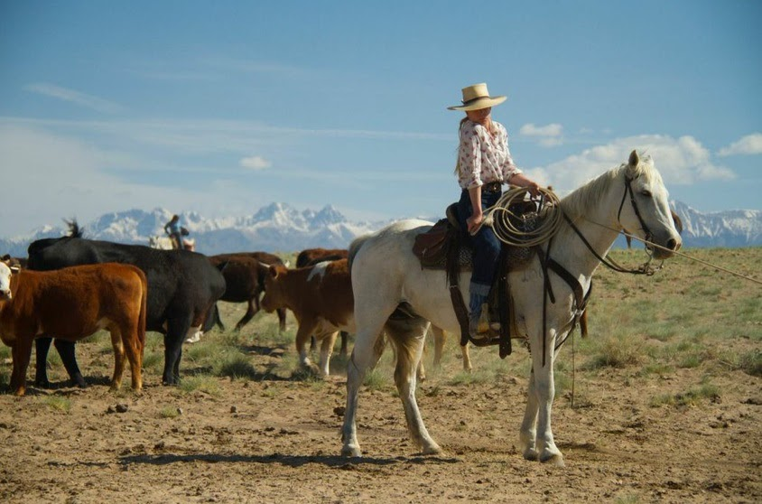 Zapata Ranch, Colorado, herding cattle 3